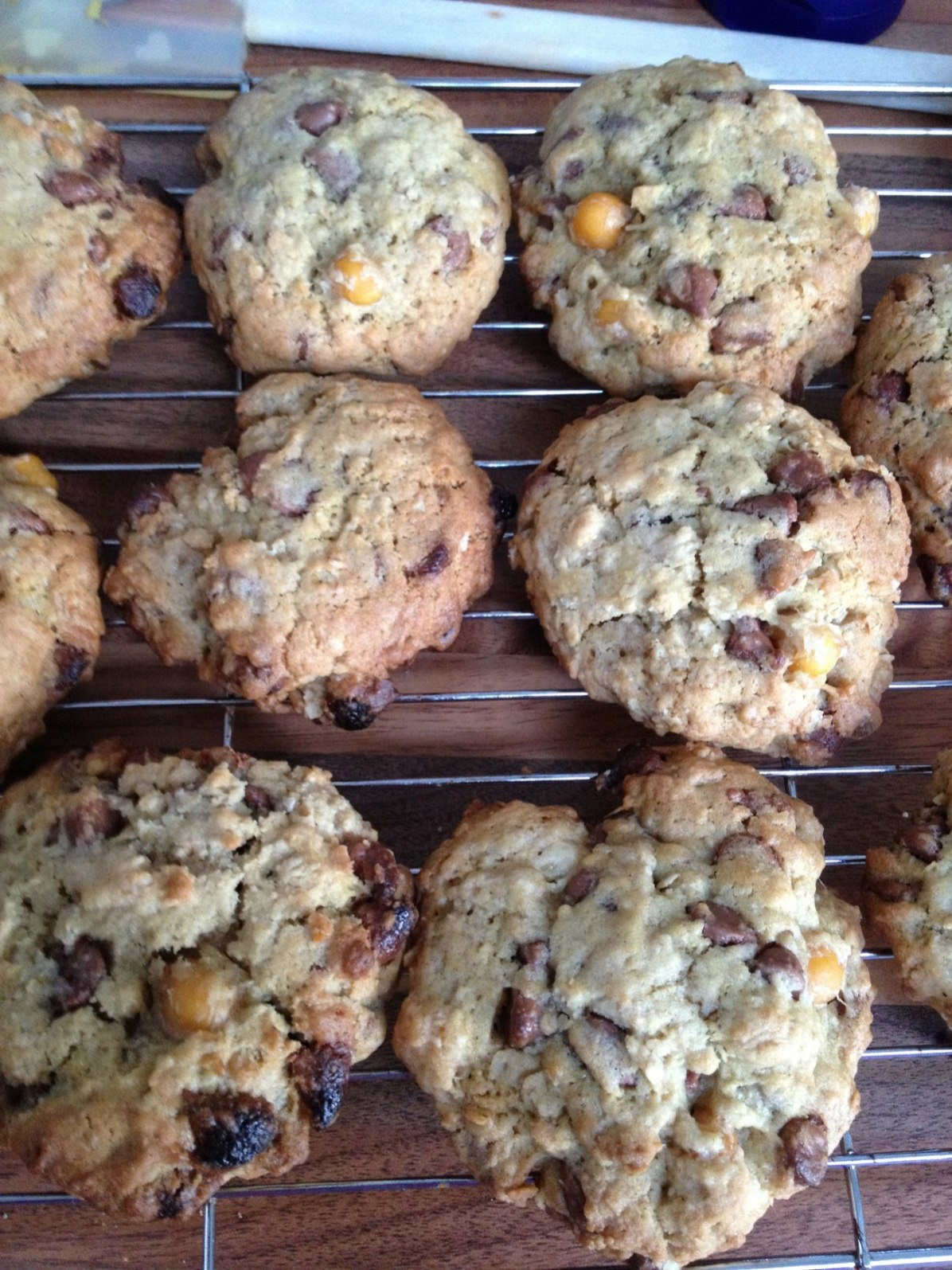 Chocolate Chip and Chickpea Cookies