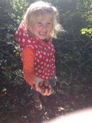 Collecting conkers