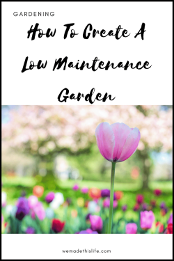 How To Create A Low Maintenance Garden