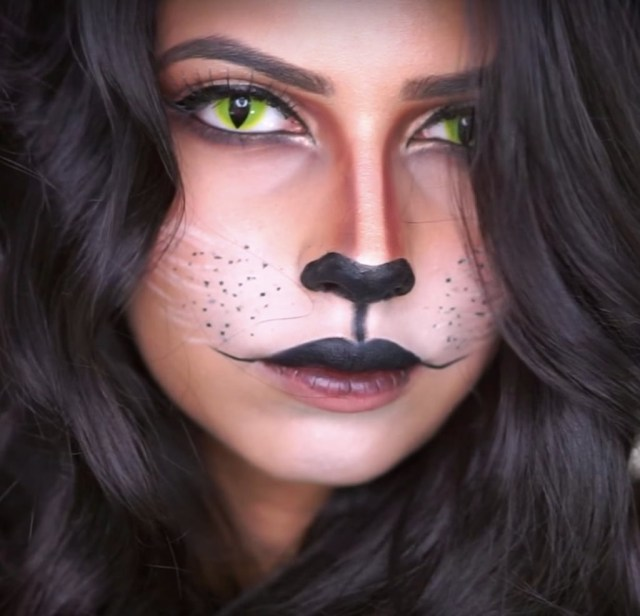 Halloween Cat Eye Makeup Cat Halloween Makeup Popsugar Beauty