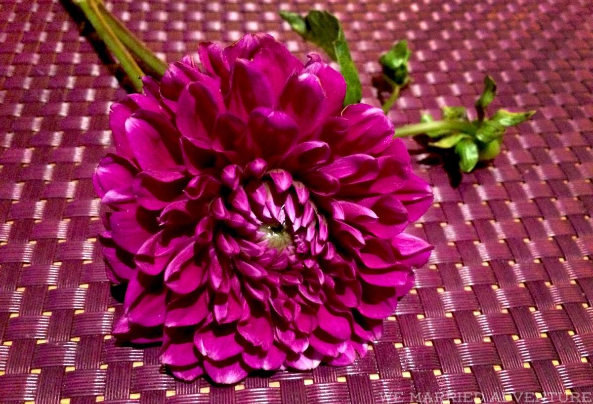 flower_wm