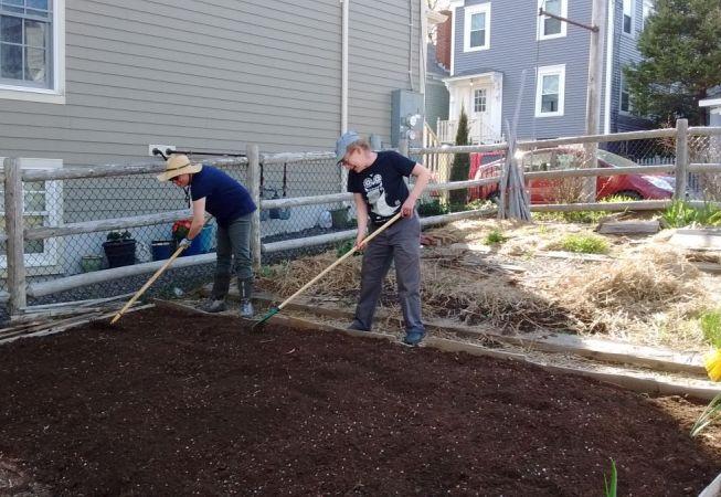 Volunteers helping our garden grow on Clark Street.