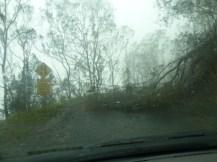 storm 024