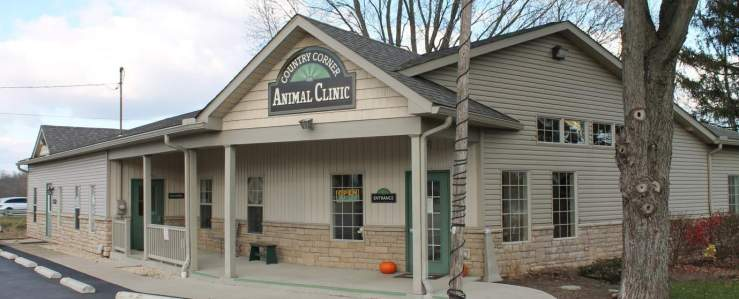 Owney Gives a Shout Out to Country Corner Animal Clinic