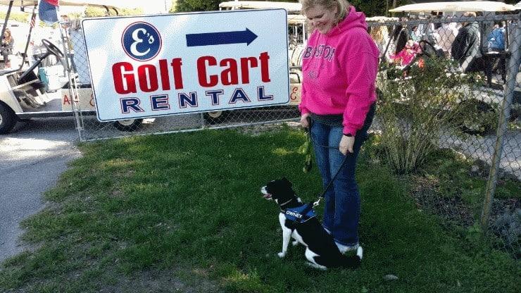 es-golf-cart-sign