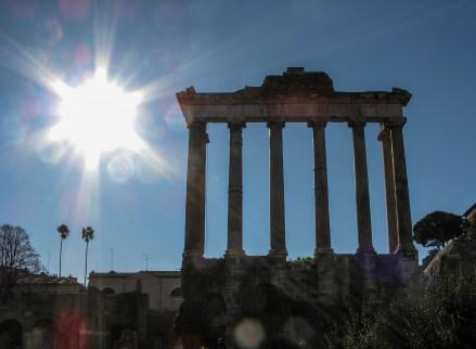 RomanForum-PalatinoHill19