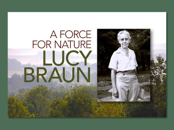 "Title slide for ""A Force for Nature: Lucy Braun"""