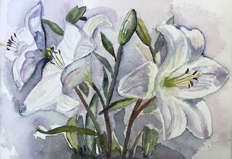 Mary Ellen's Lillies. Watercolor on paper