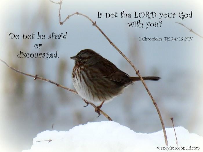 God is Good #tanka by Wendy L. Macdonald with bird image greenlightlady.wordpress.com