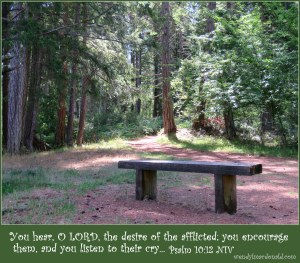 Bible Verses and Poetry to Bless the Heart by Wendy L. Macdonald