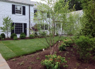 Scarsdale Addition - 9