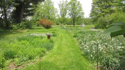 Restoration work at historic gardens