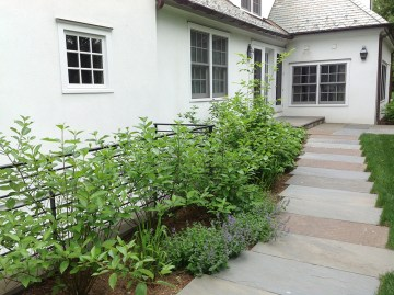 Bluestone walkway with natural screening
