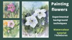 Hellebore painting video