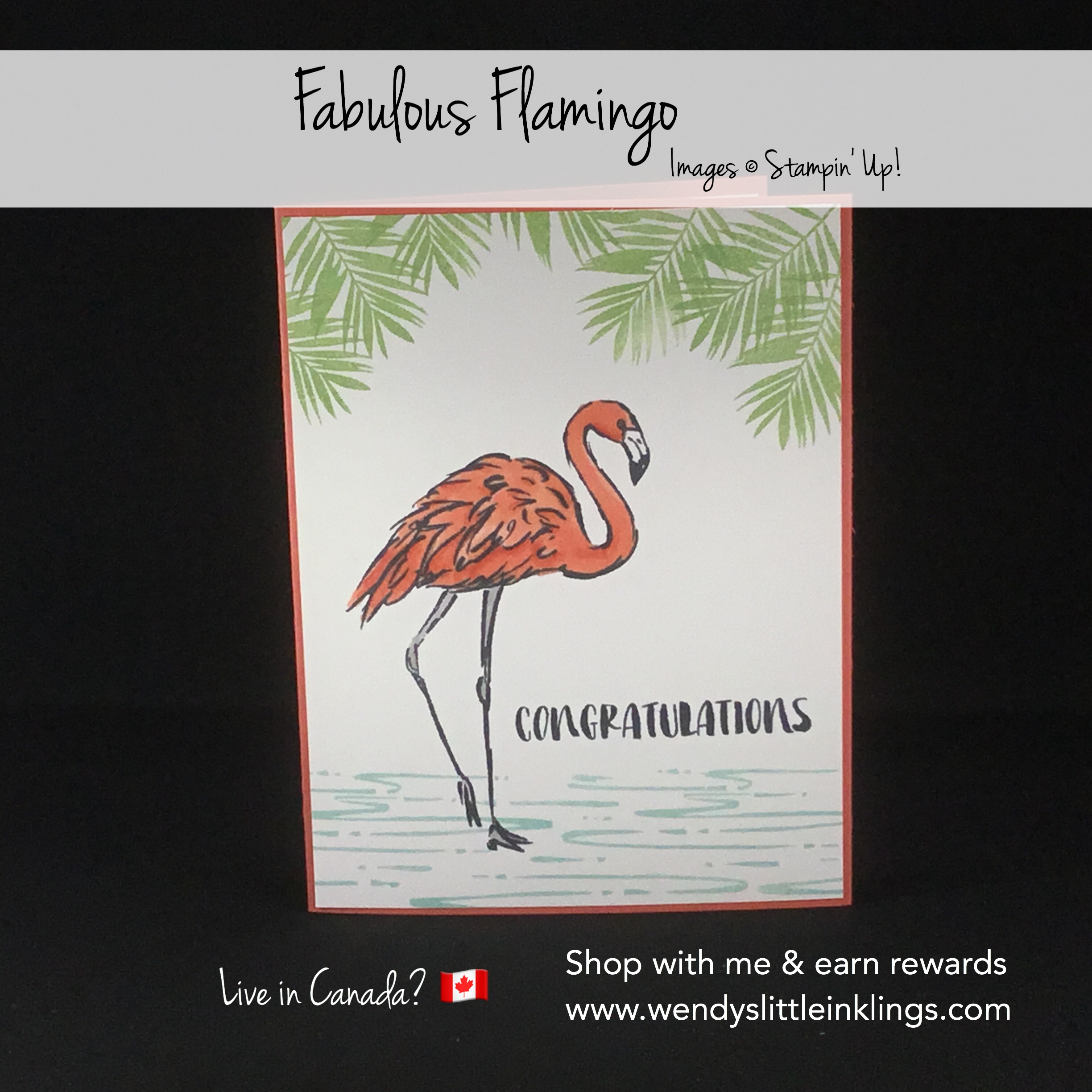 colouring-the-fabulous-flamingo-with-stampin-blends