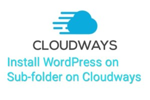 Install WordPress on Subfolder directory on cloudways