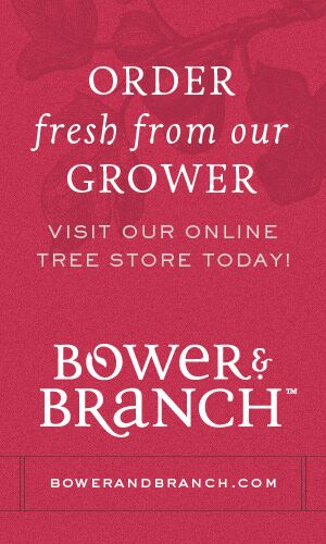 Order Fresh From our grower