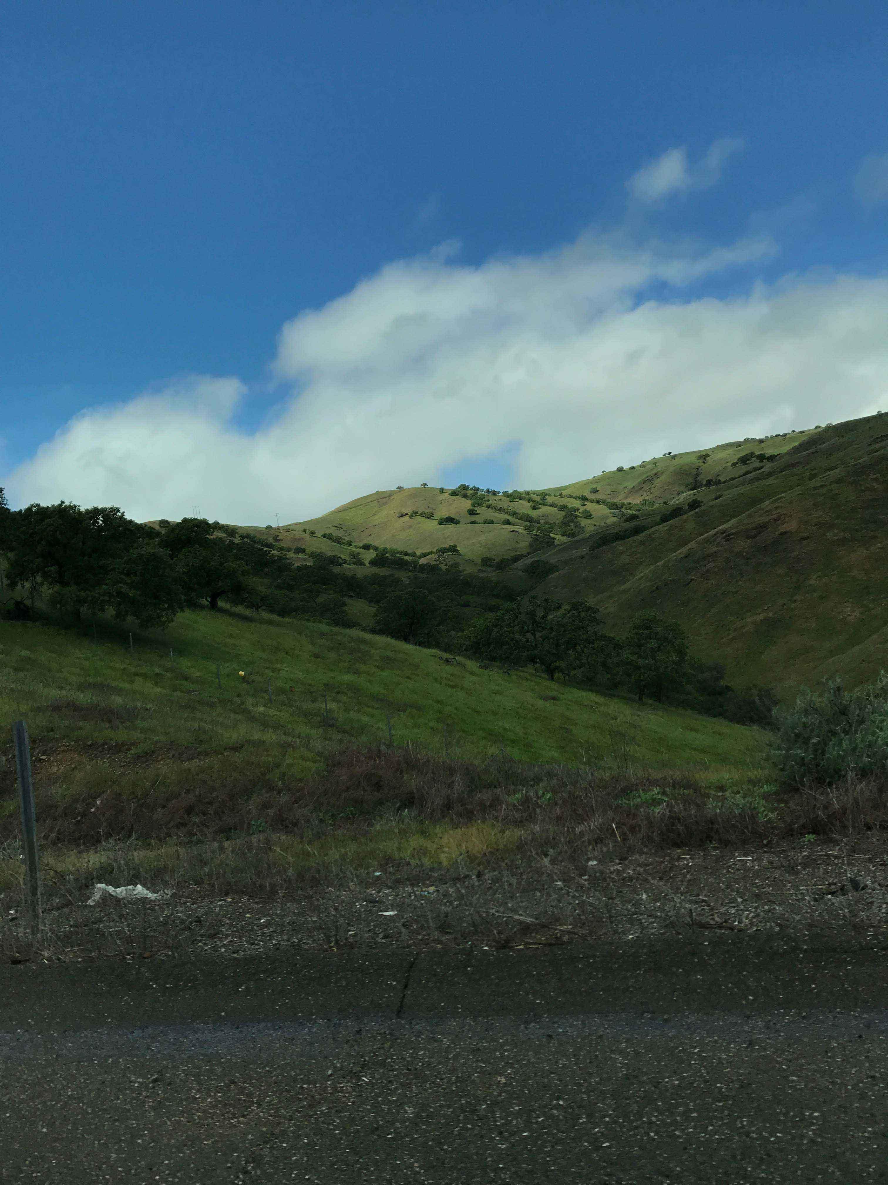 Kalifornien-Westkueste-Roadtrip9