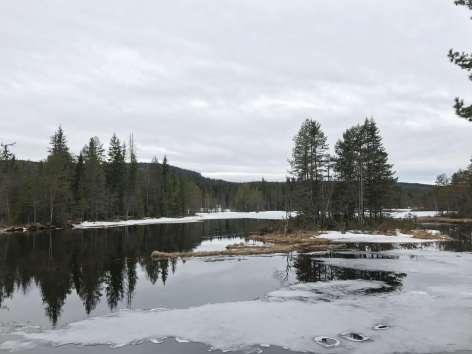 Norwegen-Oslo33