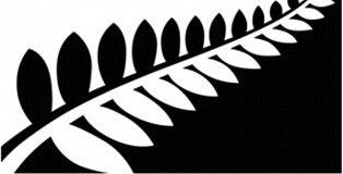 Silver fern, not in the referendum