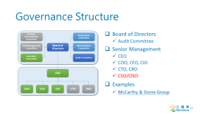 governancestructure