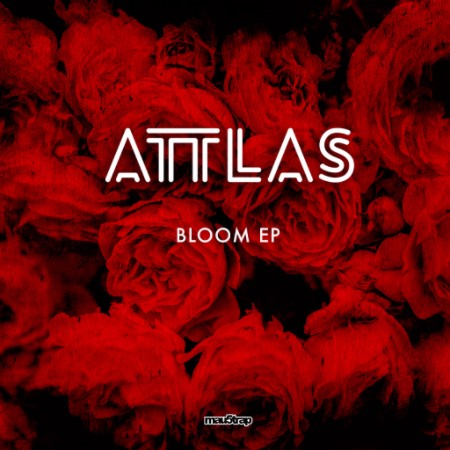 We Own The Nite NYC_ATTLAS_Bloom EP