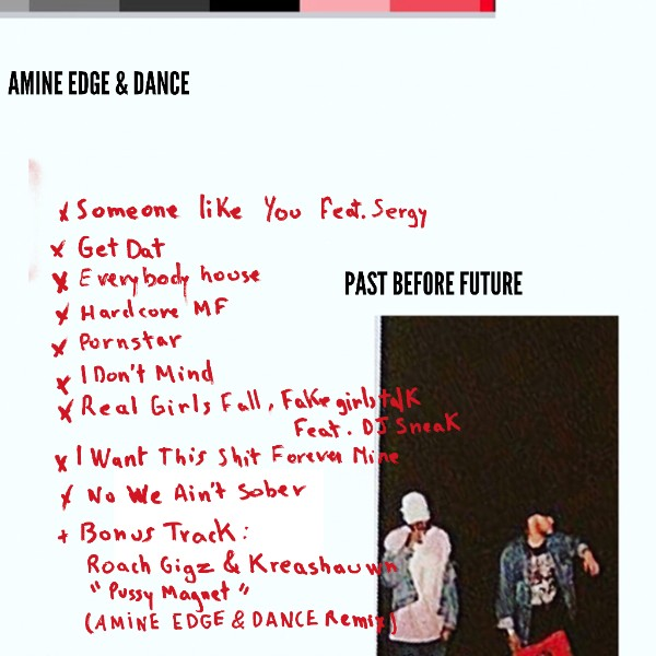 We Own The Nite NYC_Amine Edge_&_Dance_Past Before Future