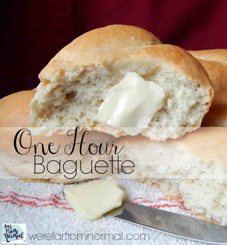 Want fresh bread with dinner tonight? Make this one hour baguette! It is so easy and super tasty, perfect with any meal!