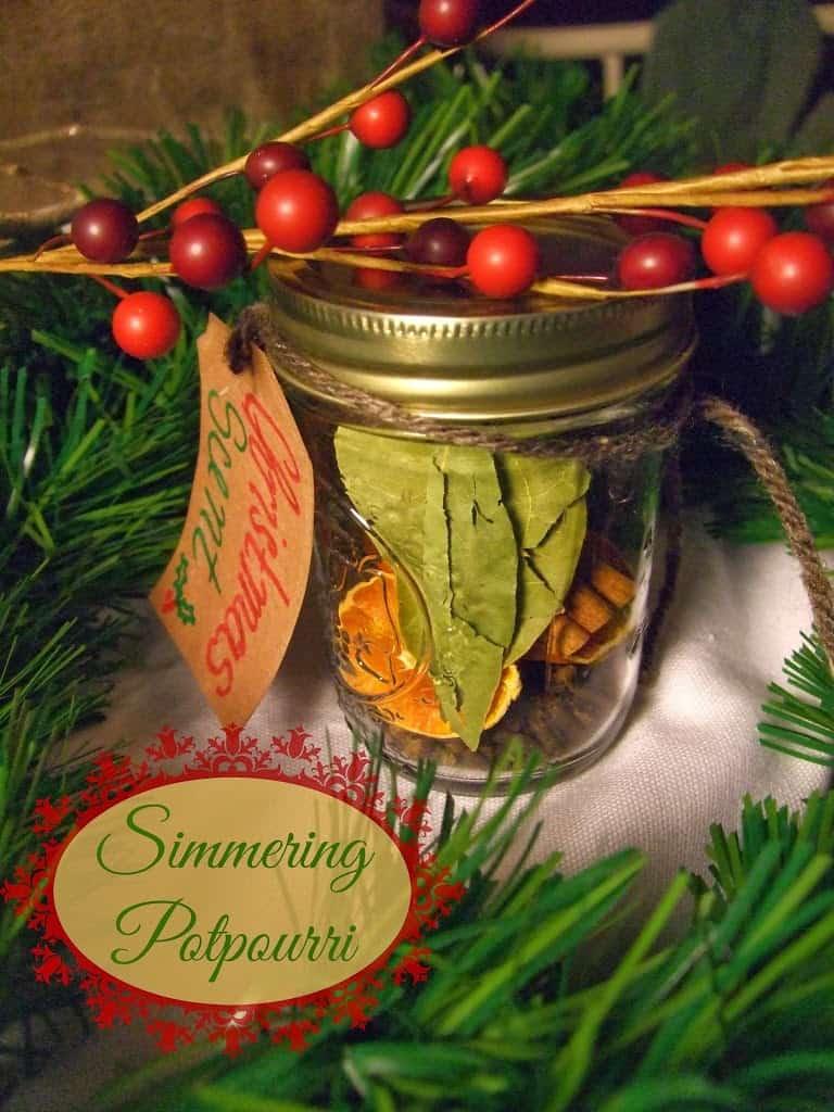 Christmas Scent Simmering Potpourri