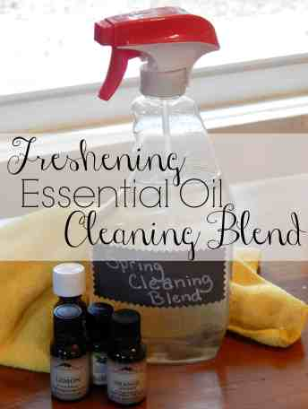 Spring cleaning blend