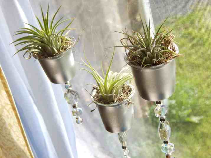 k-cup project air plant planters k-cup planters