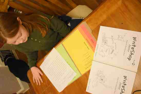 homeschool writing skills lessons
