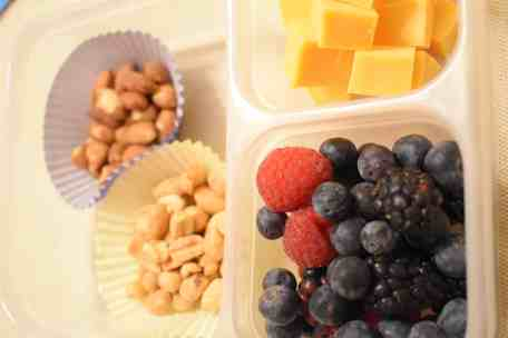 vegetarian protein boxes