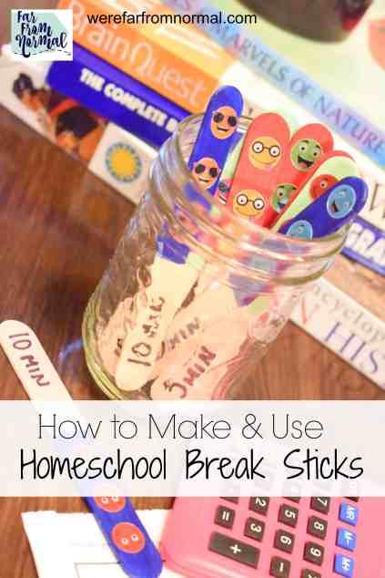 homeschool break sticks