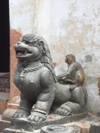 nepal015