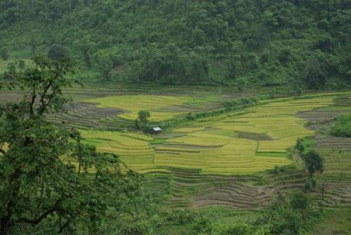 nepal232