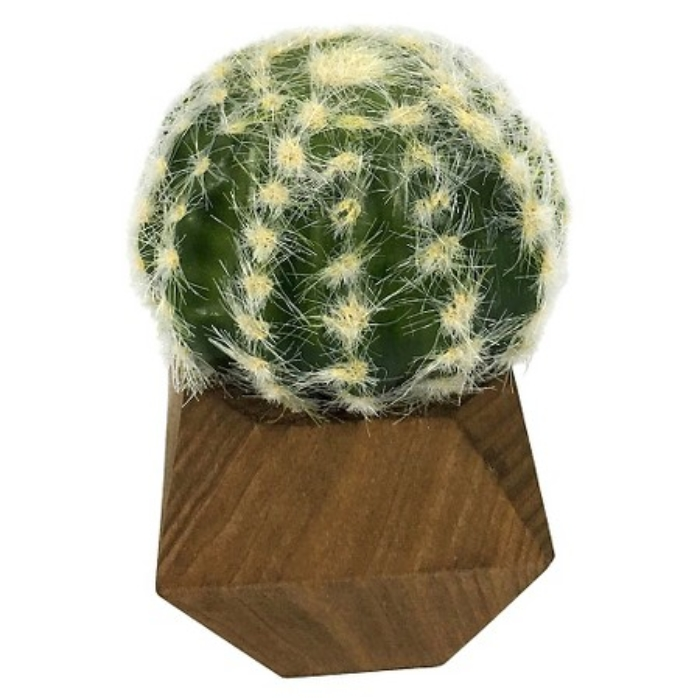 Artificial Circle Cactus Plant in Wood Pot