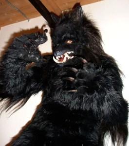 Miss Monster\'s Werewolf Costume