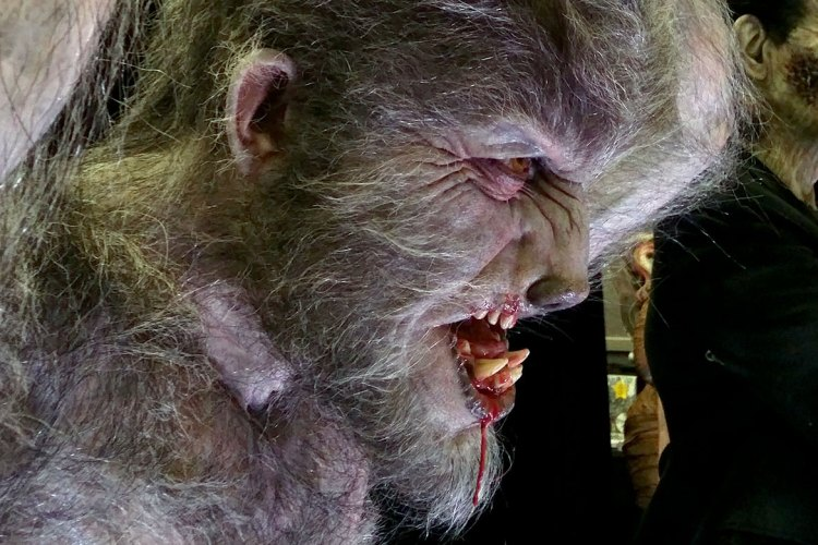 "See Mike Hill's life-size, life-like ""Aurora Wolfman"" statue up close and personal featured image"