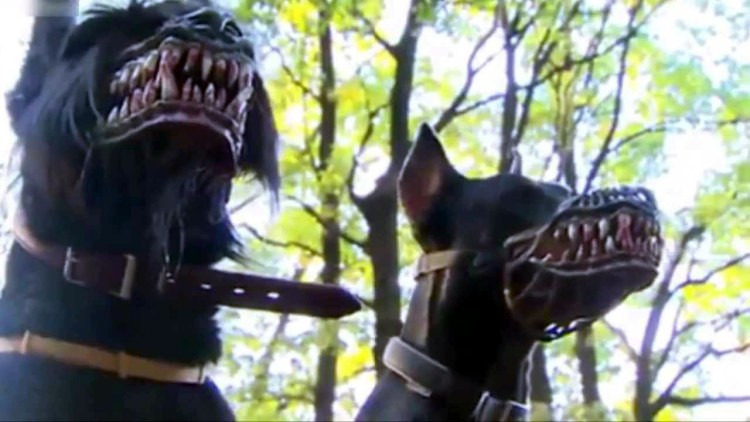 "Terrify your neighbours & restrain your dog with werewolf ""MuzzleMasks"" featured image"