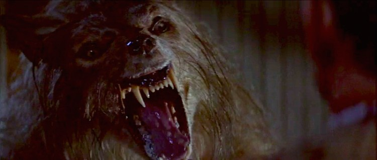 """Shout! Factory releases """"Bad Moon"""" and """"The Boy Who Cried Werewolf"""" Blu-rays featured image"""