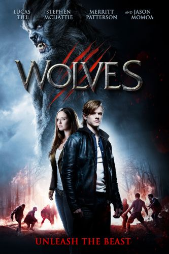 Wolves featured image