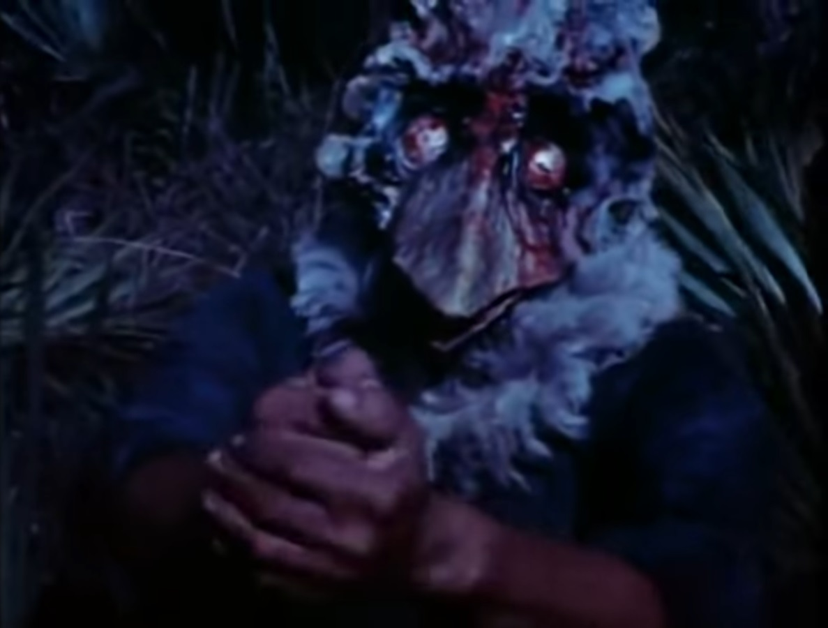 Full Moon Features: Blood Freak (1972) featured image