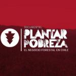 plantar-pobreza