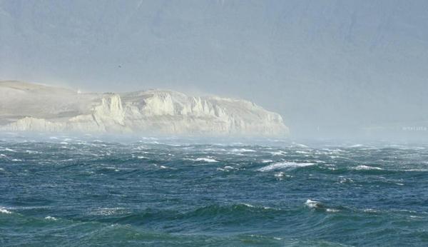 Institutos científicos de Chile y Argentina realizarán investigaciones conjuntas en mares australes