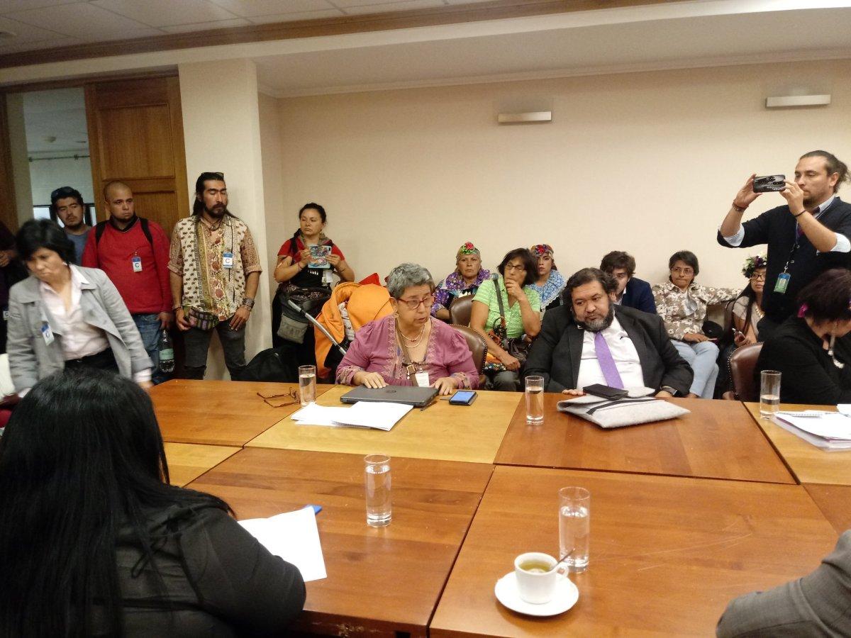Chile Mejor sin TLC: Razones fundamentadas para votar contra el TPP11 en Agricultura y especialmente las semillas y la alimentación.