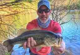 tom big bass