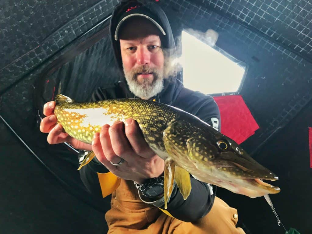 Hamlin Lake northern pike caught ice fishing