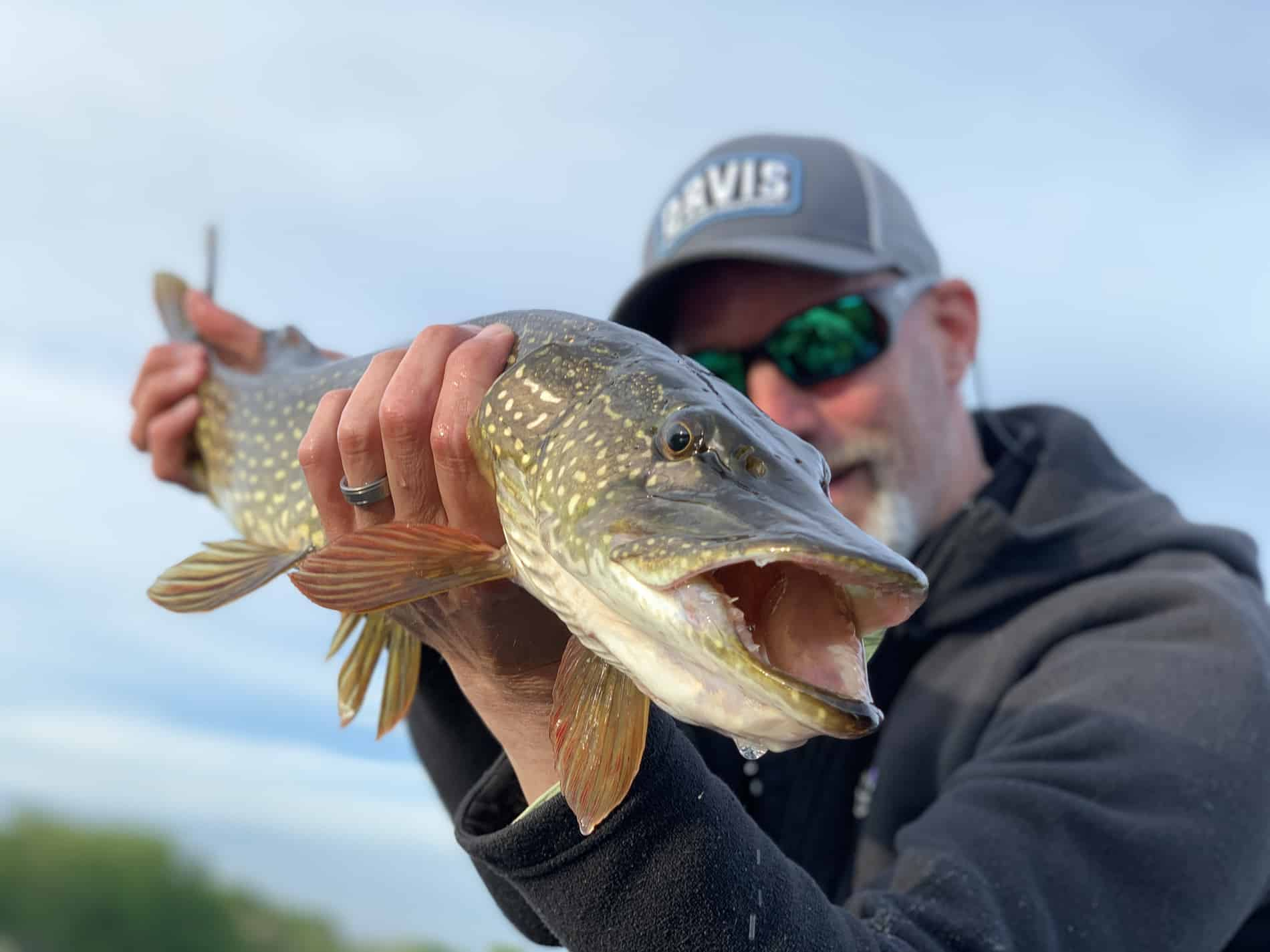 Grand River northern pike