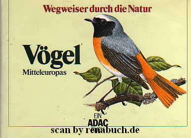 Vögel - Mitteleuropas